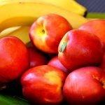 Grötklämmis med nektarin mango